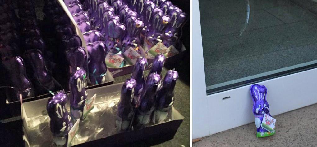 100 Osterhasen fanden ein neues Zuhause